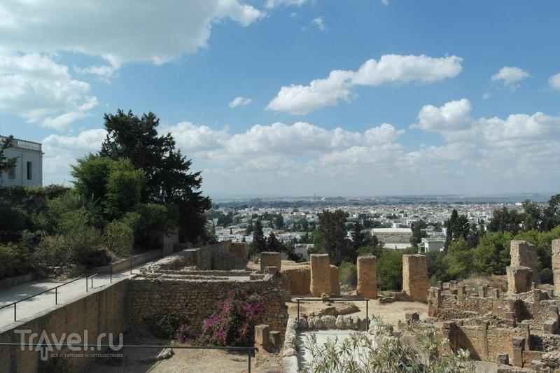 Карфаген, Тунис - Архиологический парк, холм Бирса / Тунис