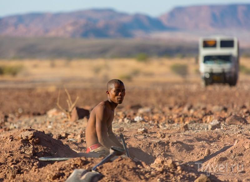 Дамаралэнд. Африка. Намибия / Фото из Намибии
