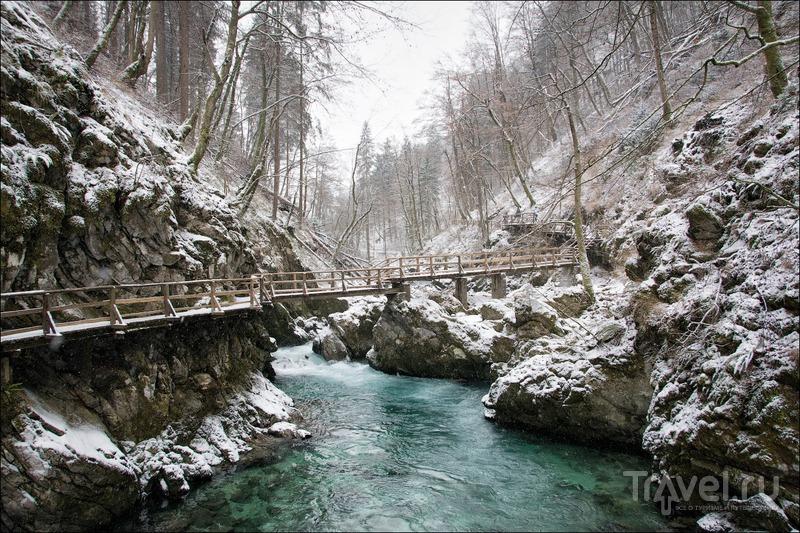 Ущелье Винтгар, Словения / Фото из Словении