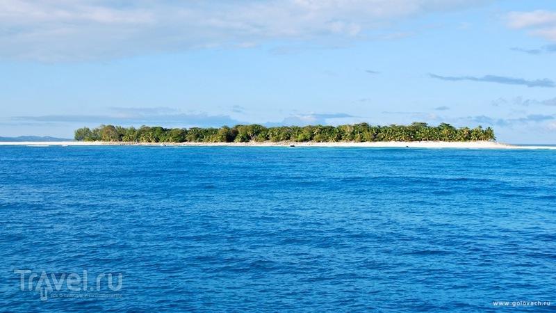 Как я на острове Мадагаскар рыбу ловил и поймал / Фото с Мадагаскара
