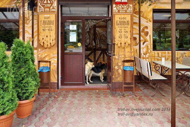 Экскурсия по городу Светлогорску / Фото из России