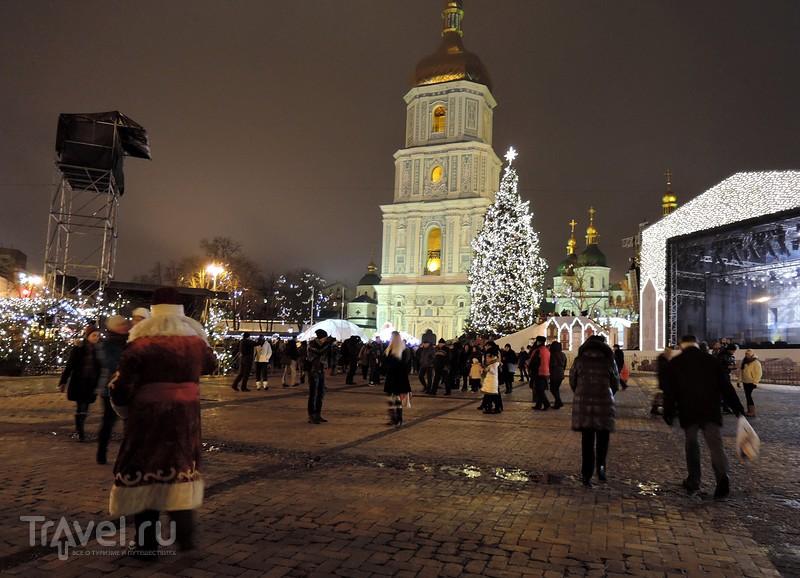Киевские елки / Фото с Украины