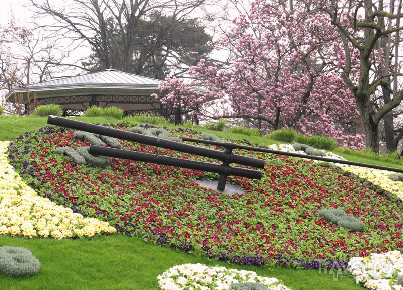 Цветочные часы в Женеве цветут даже зимой