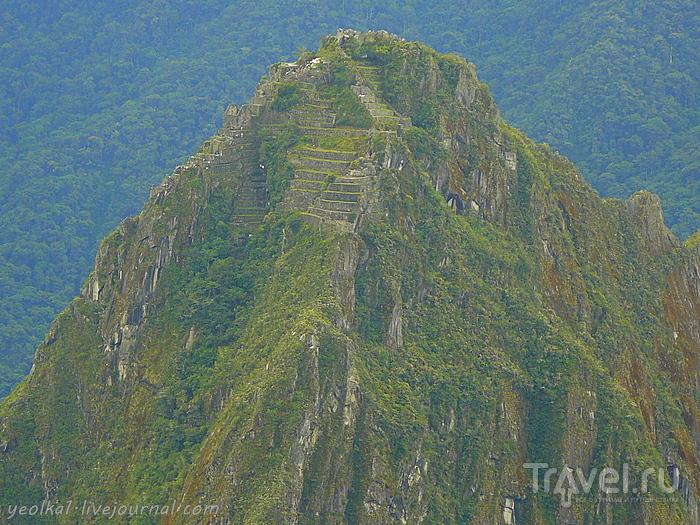 На вершине Мачу Пикчу / Фото из Перу