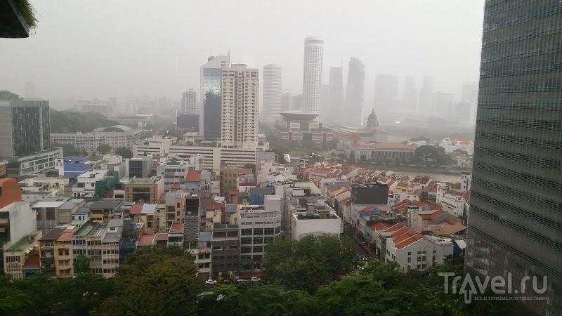 Сингапур, отчет / Сингапур