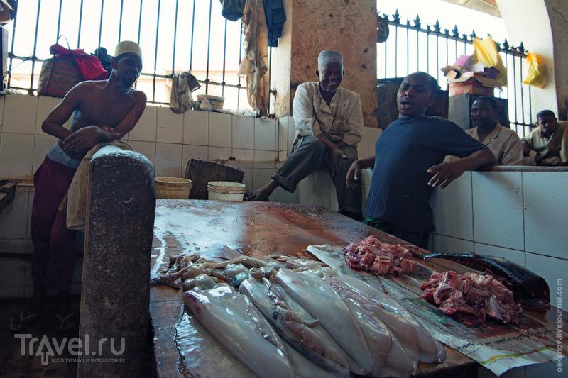 Большое Африканское Приключение / Фото из Кении