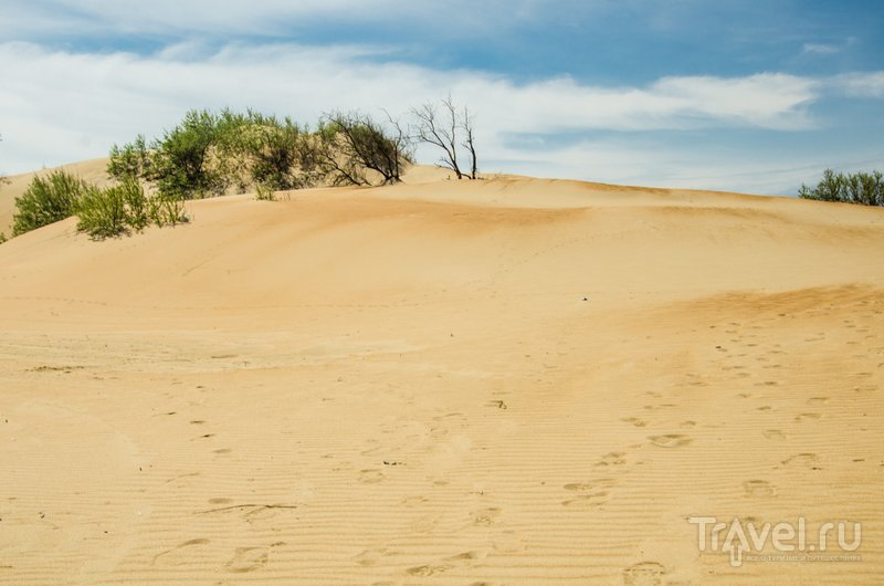 Песчаные дюны - главное украшение пляжей Анапы