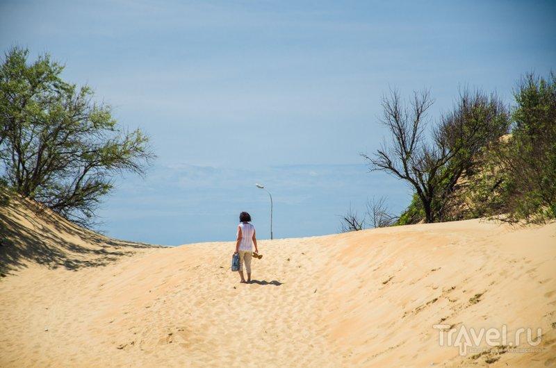 Проход на пляж лежит через дюны