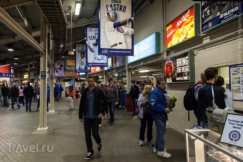 Чикаго. Go! Cubs! Go! / Фото из США