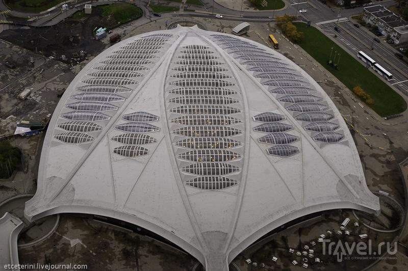 Монреаль с высоты олимпийской башни / Фото из Канады