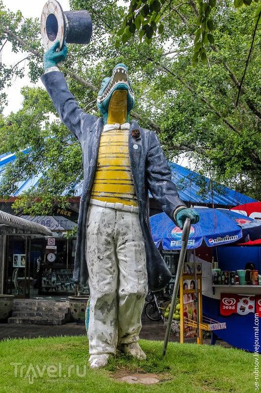 Зубастые обитатели Таиланда / Таиланд