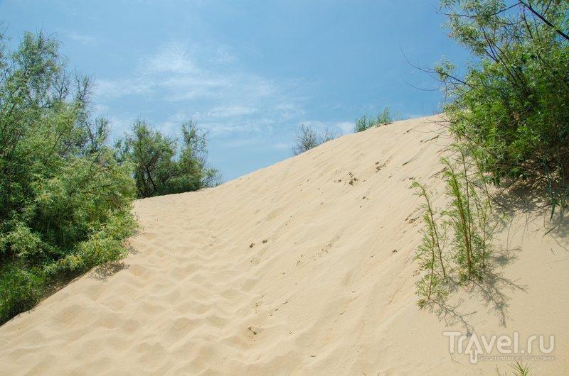 Путь к морю часто лежит через песчаные дюны