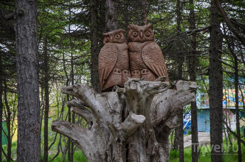 Скульптуры в парке в Магадане / Фото из России