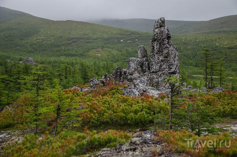 Пейзаж Магаданской области / Фото из России