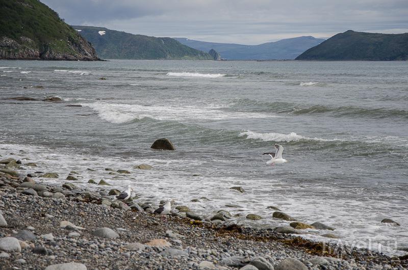 Типичный пейзаж Охотского моря / Фото из России