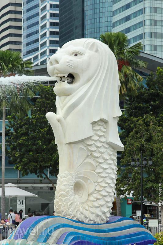 Путешествие в Азию. Сингапур / Фото из Сингапура