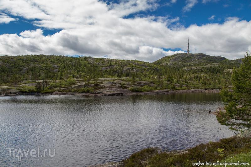 Конгсберг: тихий городок в центре Норвегии / Фото из Норвегии
