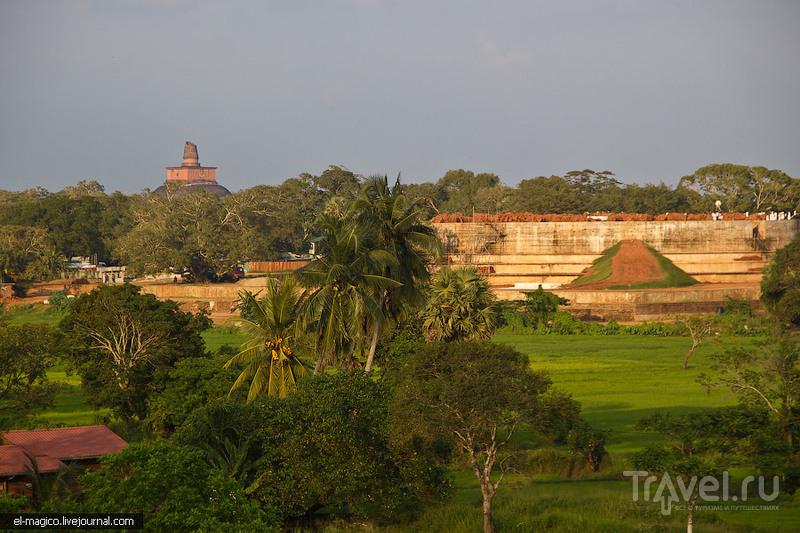 Благословенная земля. Древние храмы Цейлона и священное дерево Бо / Фото со Шри-Ланки