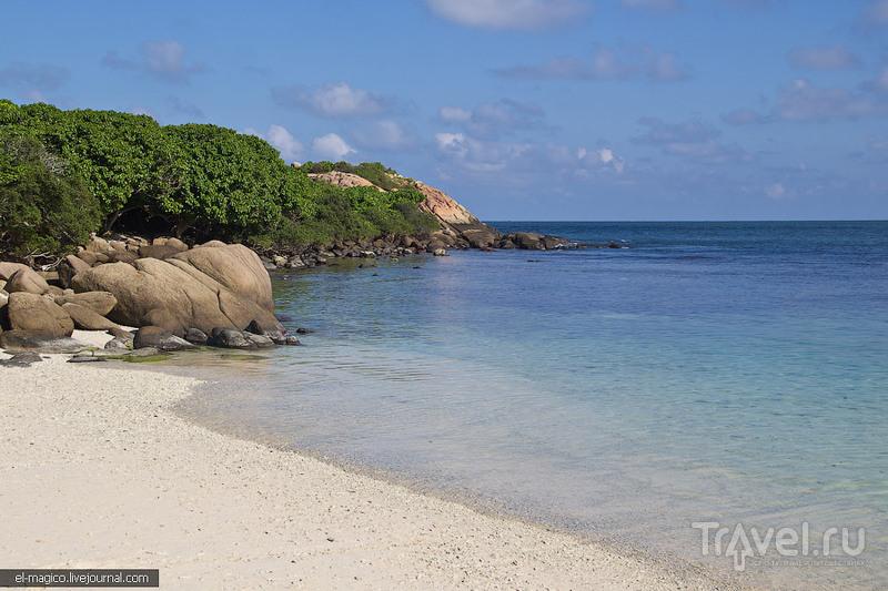 Как мы не увидели акул, а увидели коралловый остров и город Тринкомале / Фото со Шри-Ланки