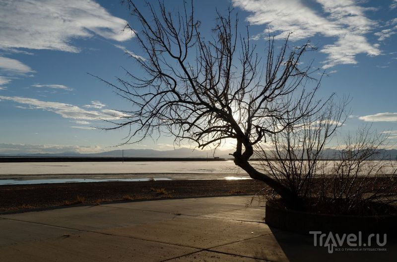 Штат Юта: Соленые поля Бонневиля / Фото из США