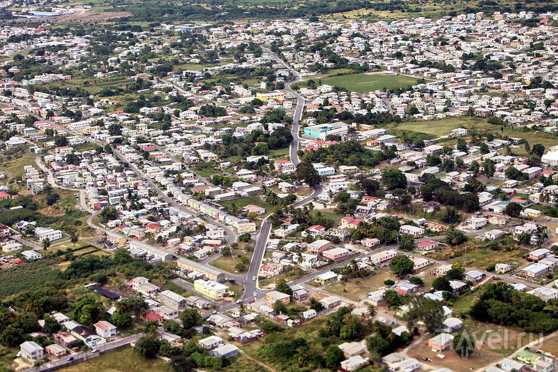 Бородатый остров Барбадос! / Фото с Барбадоса