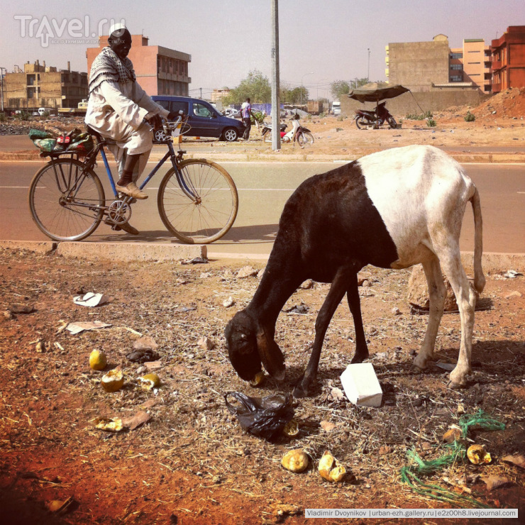 Путешествие, полное опасностей и приключений. Буркина Фасо / Буркина-Фасо