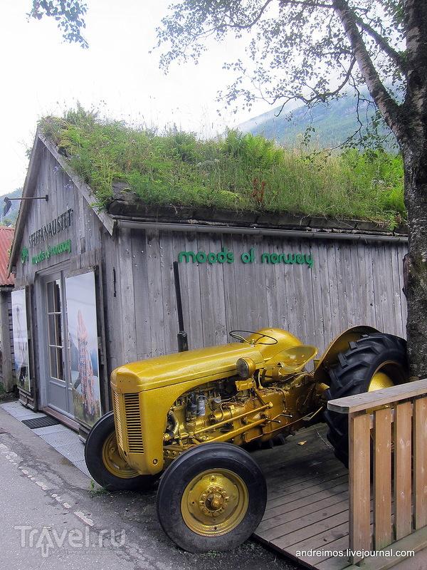 Гейрангер / Фото из Норвегии