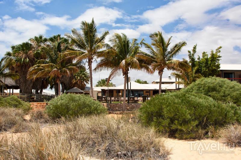 Австралийский аутбэк: Pilbara / Фото из Австралии