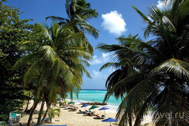 Барбадос: отель и борщ на Карибах! / Фото с Барбадоса