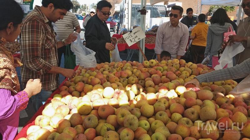 Фермерский рынок. Калифорния. Фримонт / США