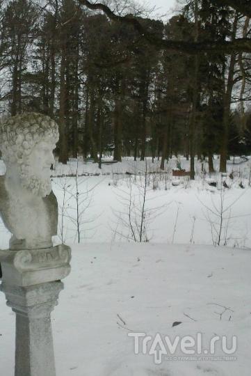 Санс-Эннуи Петра III - медицинская история романтического гнезда / Россия