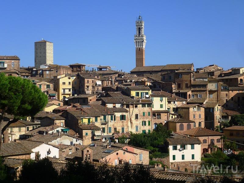Италия. Сиена / Италия