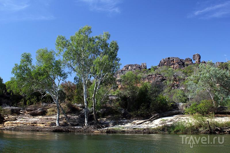 Австралия, Северные территории, East Alligator River cruise / Австралия