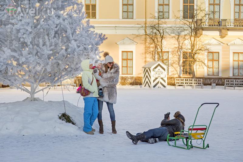 """Павловск, фестиваль """"Цветы зимой"""" / Фото из России"""