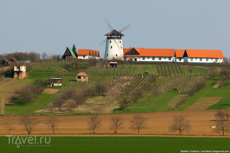 По Моравии весной гулять / Чехия