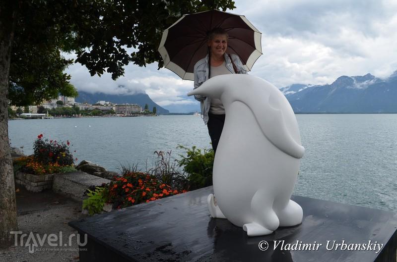 Один дождливый день на берегах Швейцарской Ривьеры / Швейцария
