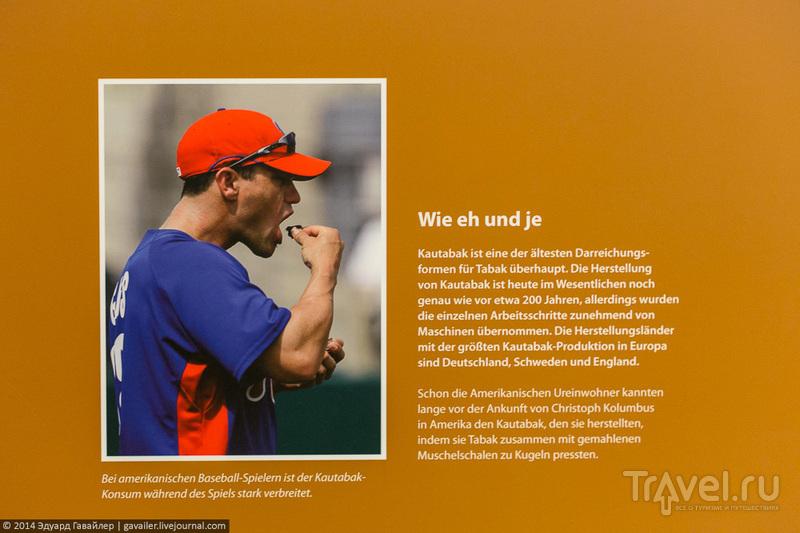 Как производят сигары / Фото из Германии