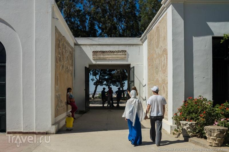 Карфаген должен быть разрушен. Музей / Фото из Туниса