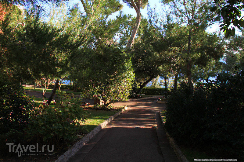 Сады Святого Мартина / Монако