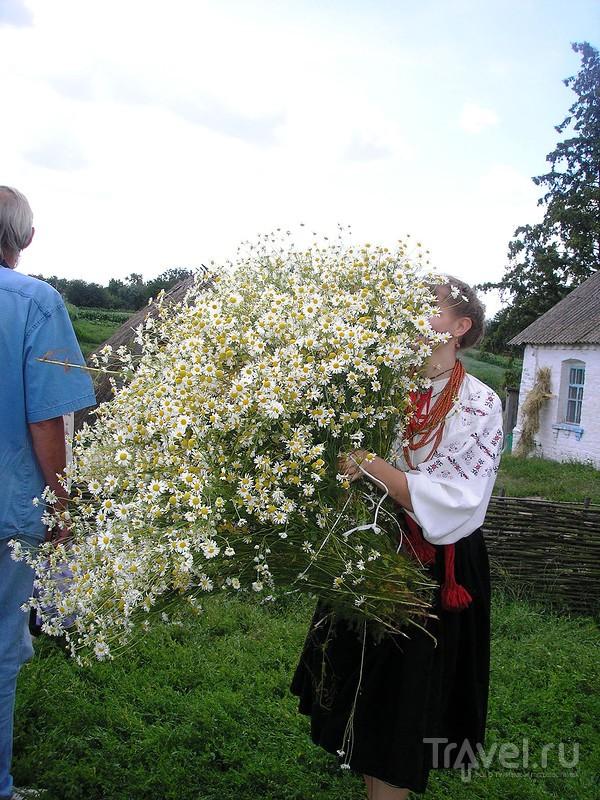 Марьяновка. Мальвовый рай на родине выдающегося тенора И.С.Козловского / Украина