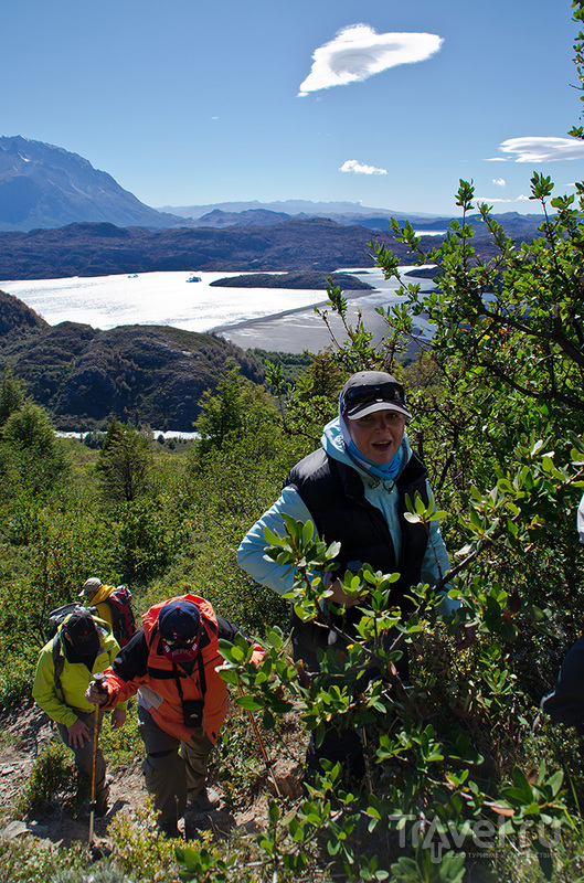 Патагония. Чили. Национальный парк Торрес-дель-Пайне / Чили