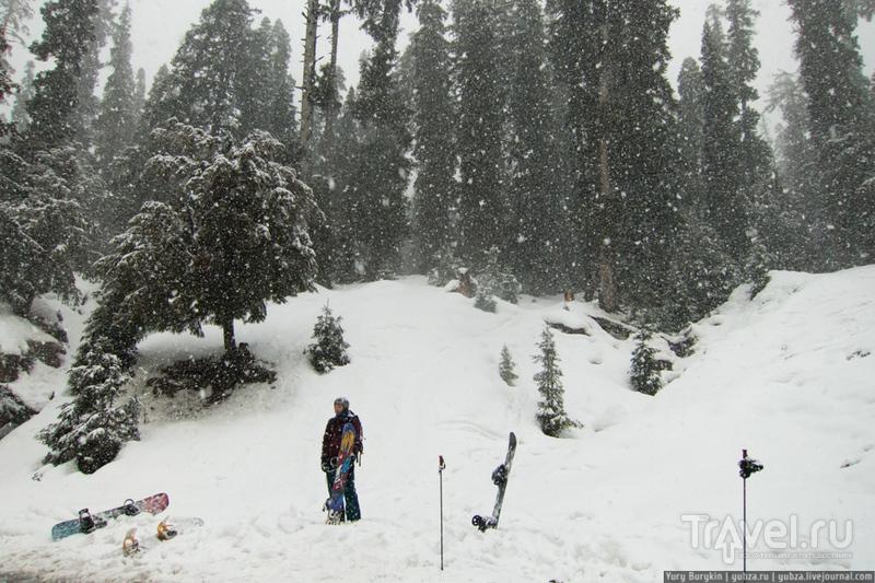 Индия. Гималаи. Гульмарг / Индия