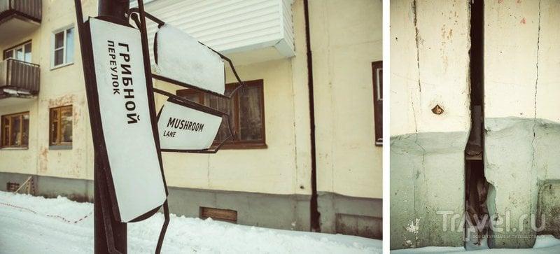 Сыктывкаровцы в Сыктывкаре сыр на базаре в таре  продавали / Россия