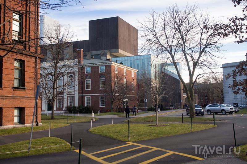 Тупые американцы или лучшие университеты мира: Harvard и MIT / США