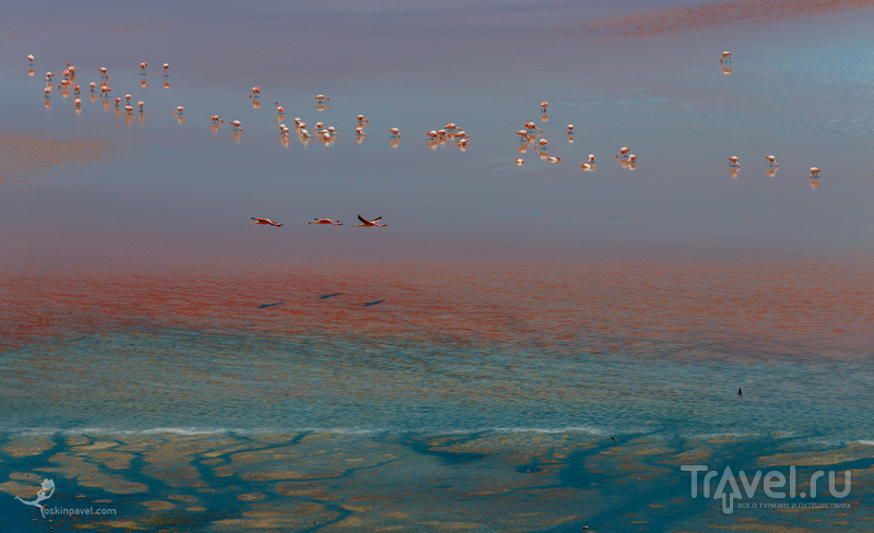 Шаг за шагом, босиком по воде... / Фото из Боливии