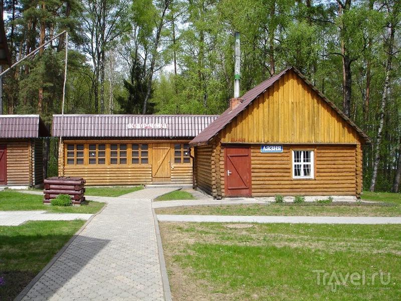 Зубренок. Белорусский Артек весной / Белоруссия