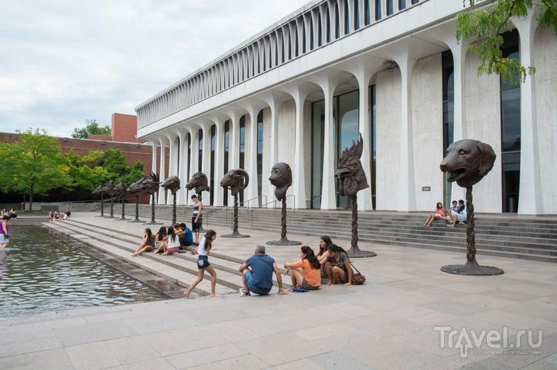 Университеты Лиги Плюща: Принстон / США
