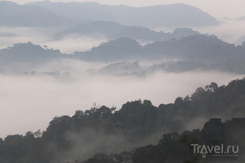 Неизвестная Руанда / Фото из Руанды