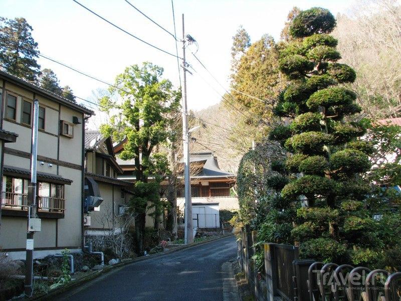Гора Такао, Япония / Япония