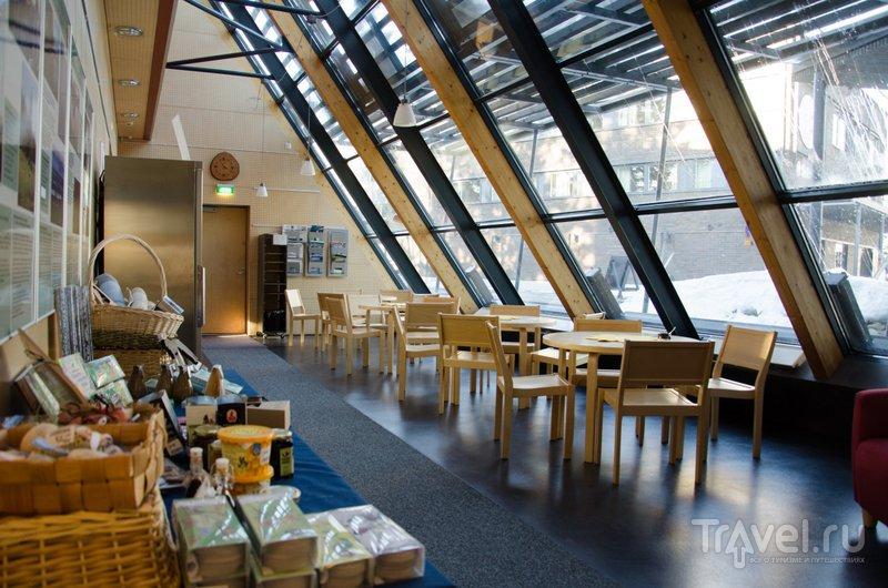 Кафе в визит-центре Укко / Фото из Финляндии